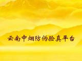 云南中烟防伪验证-定制开发系统